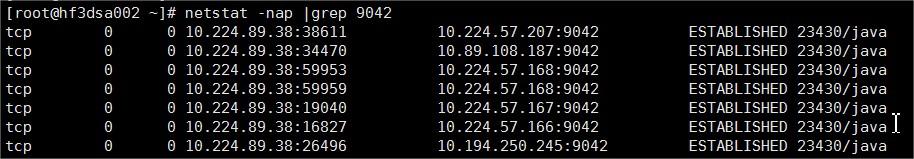 DS-10.224.89.38 - root@hf3dsa002optwebexdsagentconf - Xshell 5